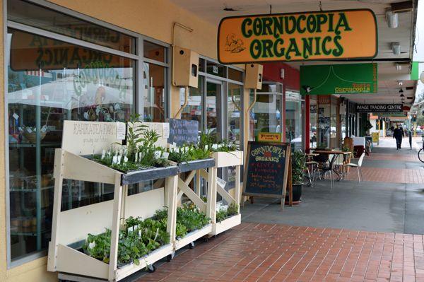 Cornucopia Organics, Hastings