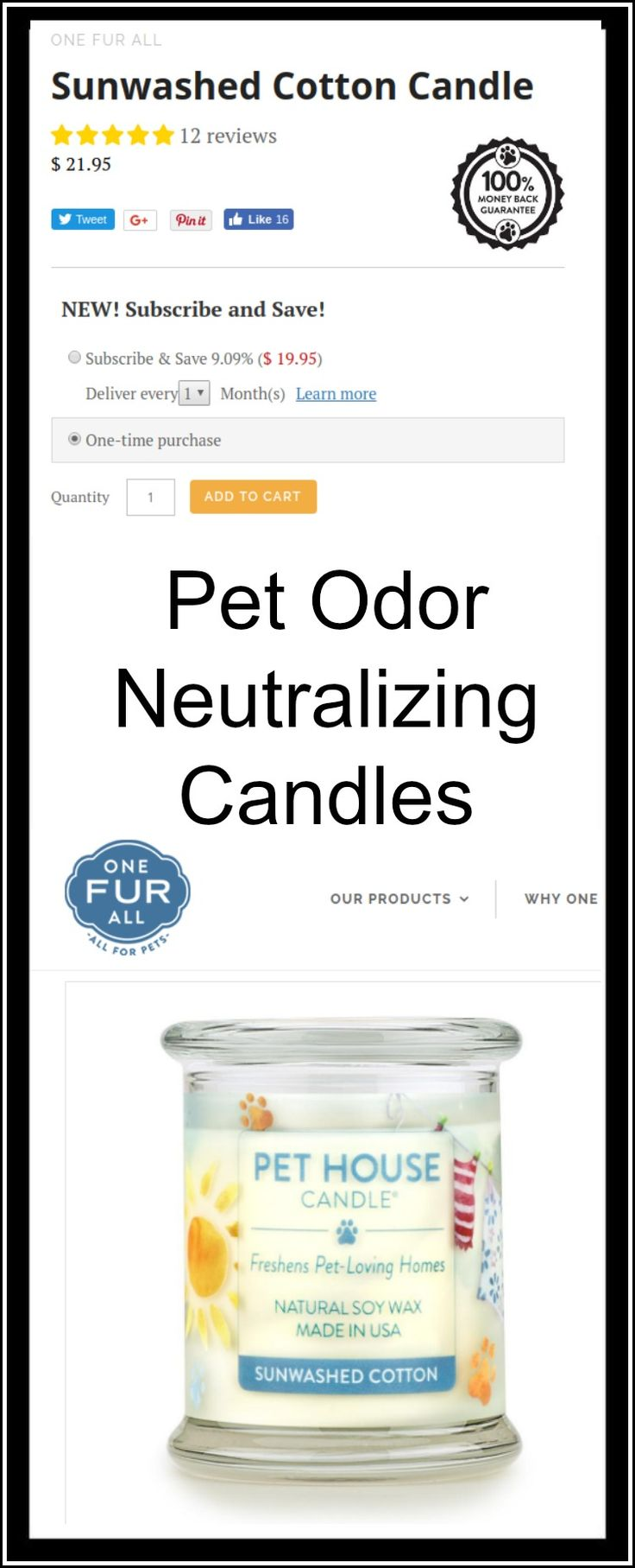 Click to purchase PET ODOR Neutralizing Candles from One Fur All. Pet House Candles Sun Washed Cotton candles help eliminate pet odors. Pet Hacks.
