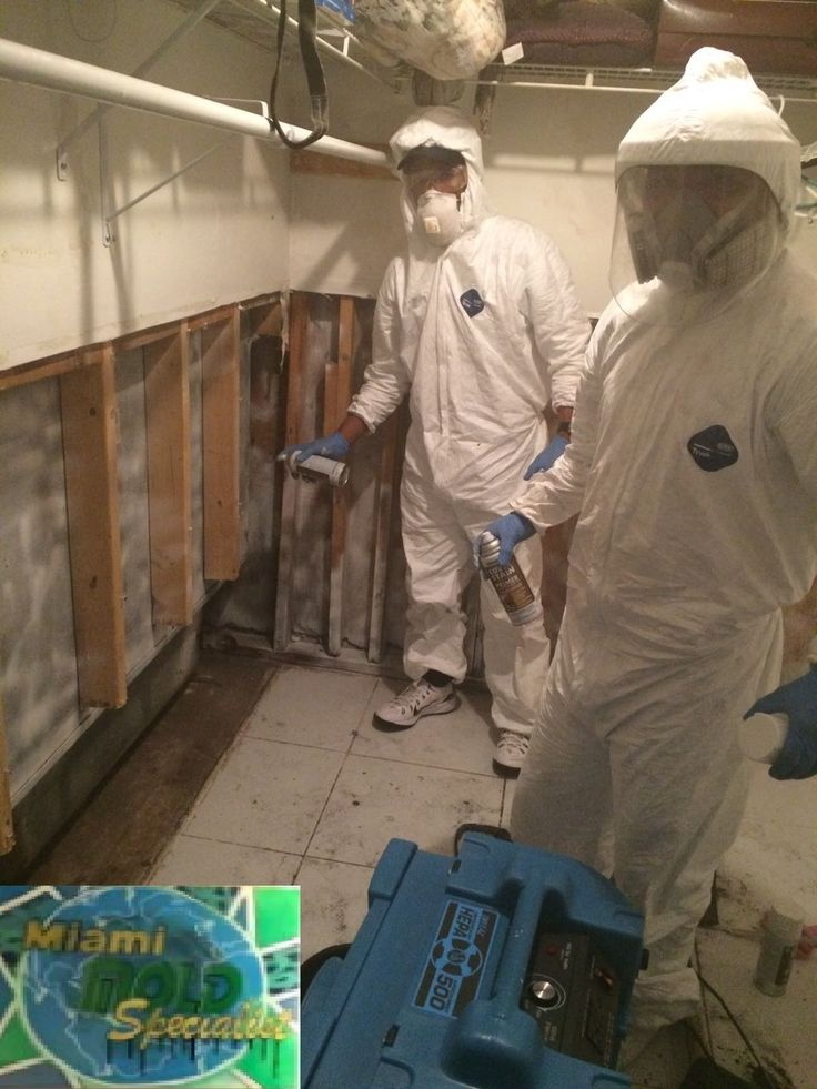 Miami Mold Specialist sends down a #certified #licensed #technician, as well as #environmental #analyst to perform a #full #inspection entailing the #extraction of #moisture #readings throughout the #property.