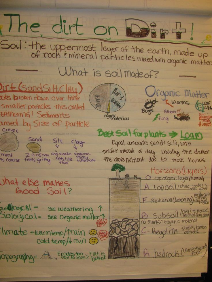 69 best images about 5th science on pinterest anchor for Soil facts for 4th grade