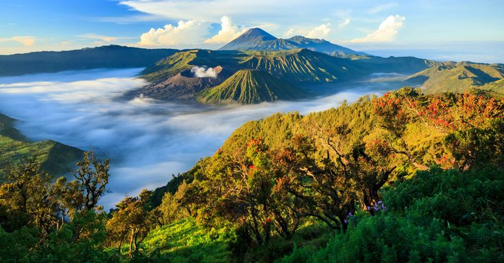 indonezia.jpg (1200×628)