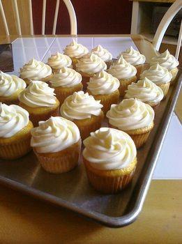 Fuzzy Navel Cupcakes - The Sweet & Sassy Baker