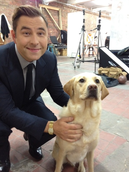 David Walliams....Hero ... swimming the Thames... and rescuing a dog