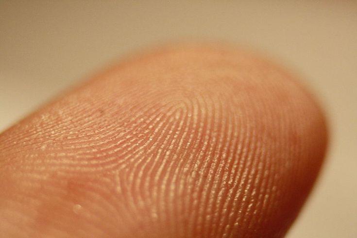 Les Empreintes digitales :: La police scientifique