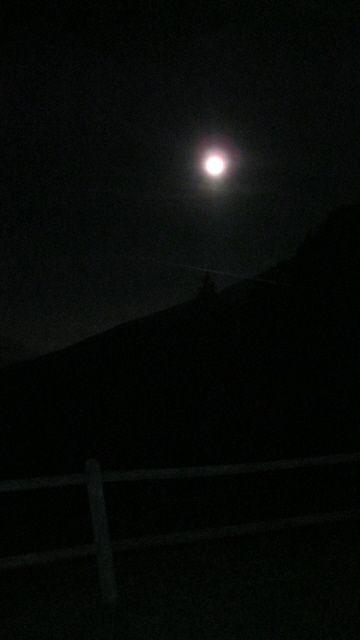 La luna che ci ha accompagnato prima dell'alba alla partenza verso i punti di osservazione ... il censimento in quota ha infatti inizio alle prime luci e l'avvicinamento inizia così con il favore della luna (www.uomoeterritoriopronatura.it)