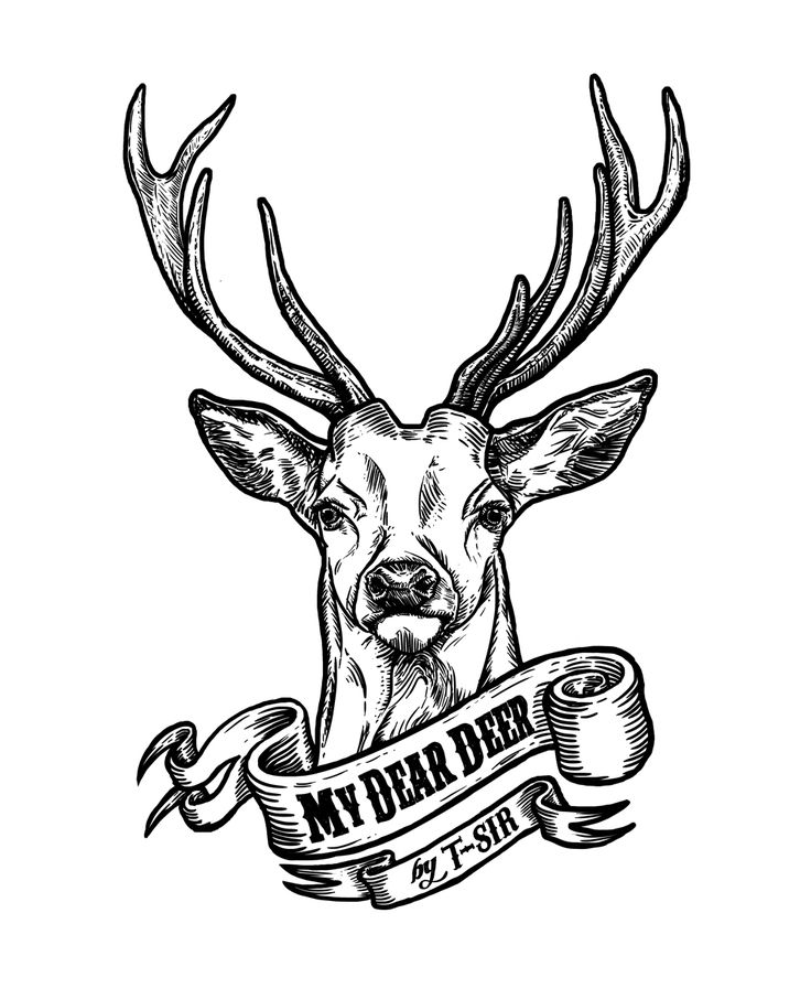 58 best oh dear images on Pinterest | Deer, Tattoo ideas and Deer tattoo