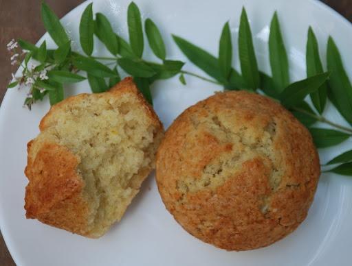 ginger lemon muffins   Muffins, Scones, Etc.   Pinterest