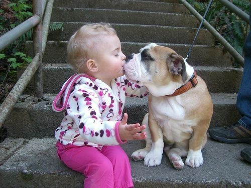 Aawww I don't think I'd let Baby Kylie kiss Roxy though...she's kinda stinky!