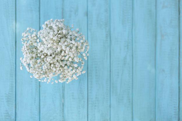 Vista superior de flores consideravelmente brancas com azul tábuas de madeira de fundo Foto gratuita