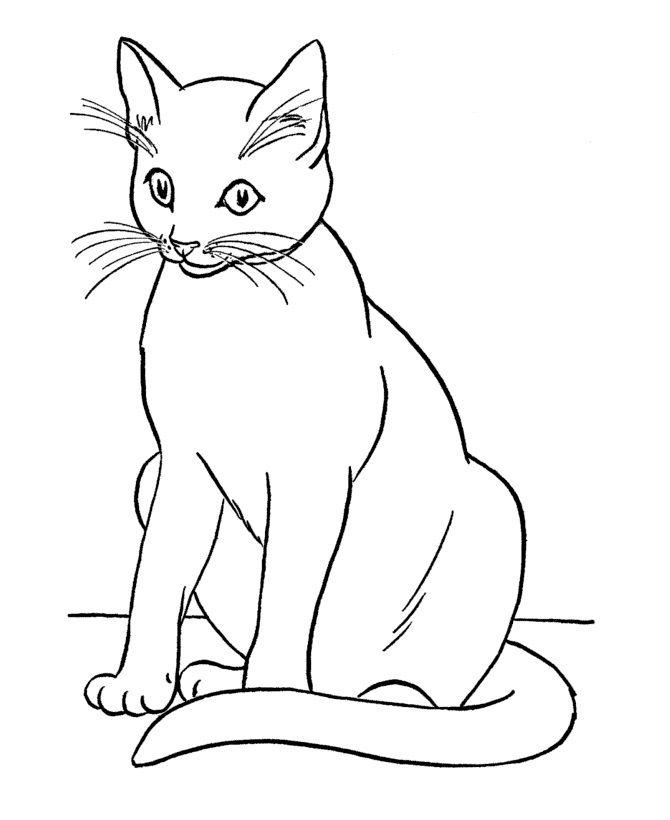 b092ba25d4e275e6705d54998aeb47c6--flower-coloring-pages-cat-coloring-pages-for-kids