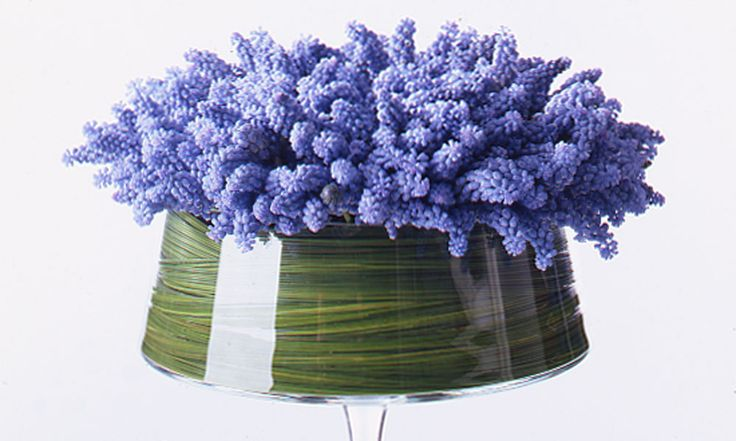 ~~ Paula Pryke Floral Artist