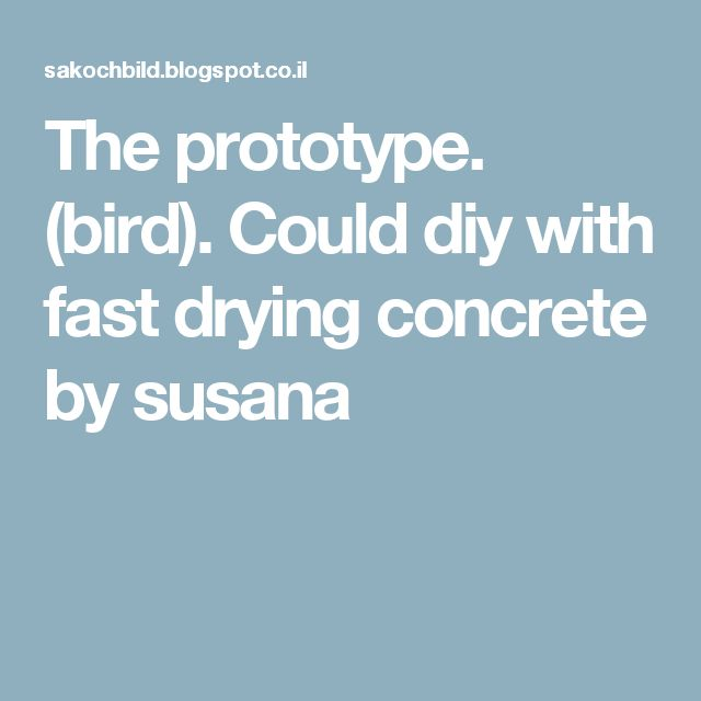 The prototype. (bird). Could diy with fast drying concrete by susana