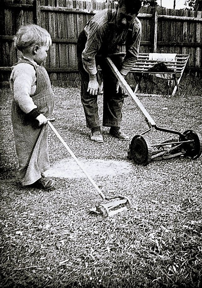 Life in gardens/enclos*ure: nice backyard scene via Museum Victoria: John and George Lee with push mowers, September 1956, Greensborough, near Melbourne, Australia.