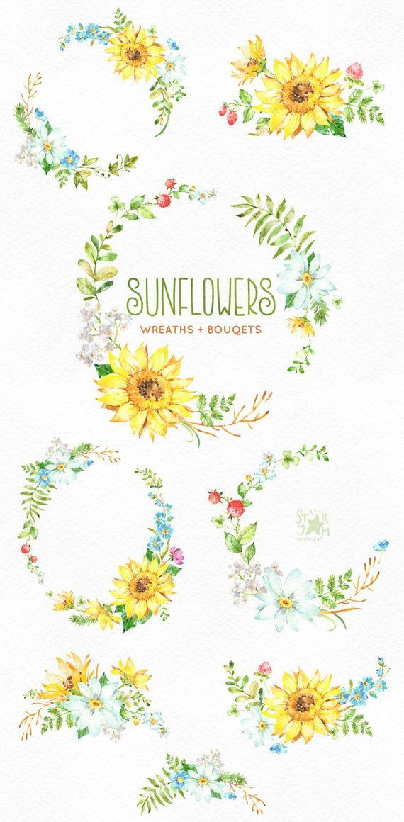 Sunflowers Wreaths Bouquets Watercolor Flowers Clipart Floral