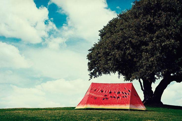 Con le tende FieldCandy il campeggio è di design. Dal pattern ironico al romantico, dall'iperrealista al fantasy: ecco 24 modelli.