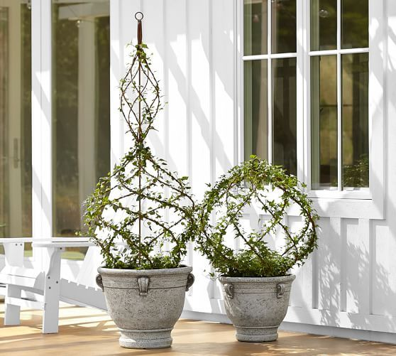 http://www.potterybarn.com/products/live-ivy-spiral-topiary-topiary-schubert-nursery/