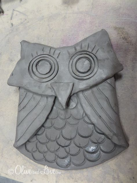 clay elementary owl project