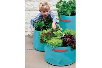 Colourful planters for veg, salad or flowers. £12.98