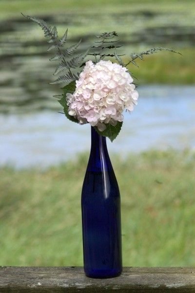 Simple hydrangea arrangement  in a wine bottle with babys breath rather than the greenery