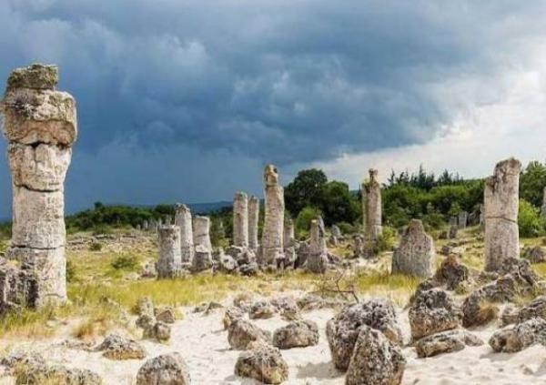 Pobiti Kamani, Hutan Batu Purba dari Bulgaria