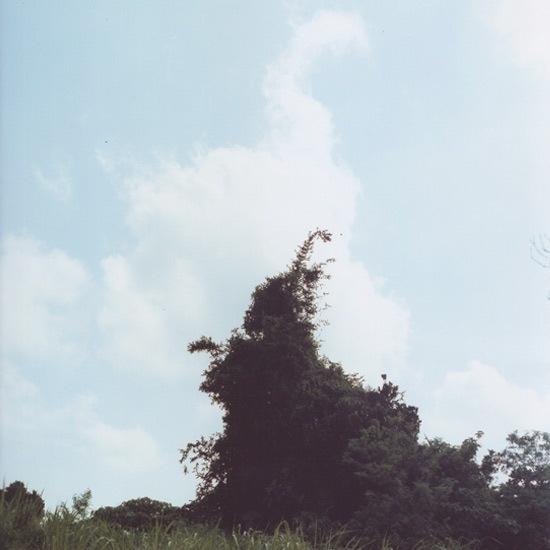 Il vento trascinava le nuveole verso sud. Ma per quanto le spazzasse via, se ne formavano continuamente di nuove. Provenivano senz'altro da una terra dell'estremo nord, dove uomini decisi e ostinati, avvolti in pesanti abiti grigi, le fabbricavano in silenzio, dalla mattina alla sera. Come le api producono il miele, i ragni tessono le tele e la guerra genera vedove.