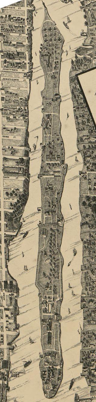 Taylor Map - Roosevelt Island.jpg