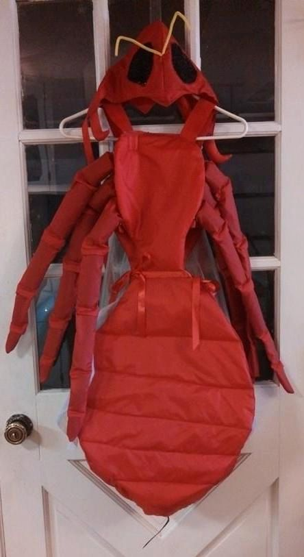 Insect Costsume Red Ant Educational Costume. by SilverGirlArtistry, $160.00