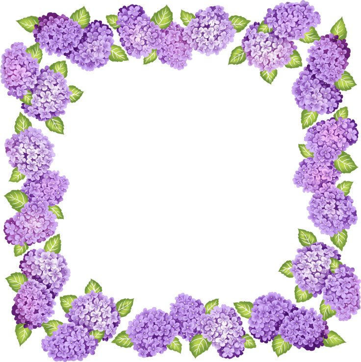 transparent frame clipart - Google Search