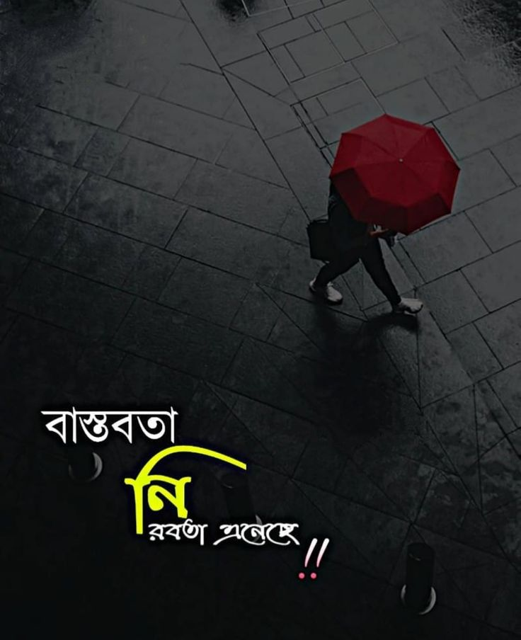 14+ Best Bangla Status For Facebook Bengali Fb Status