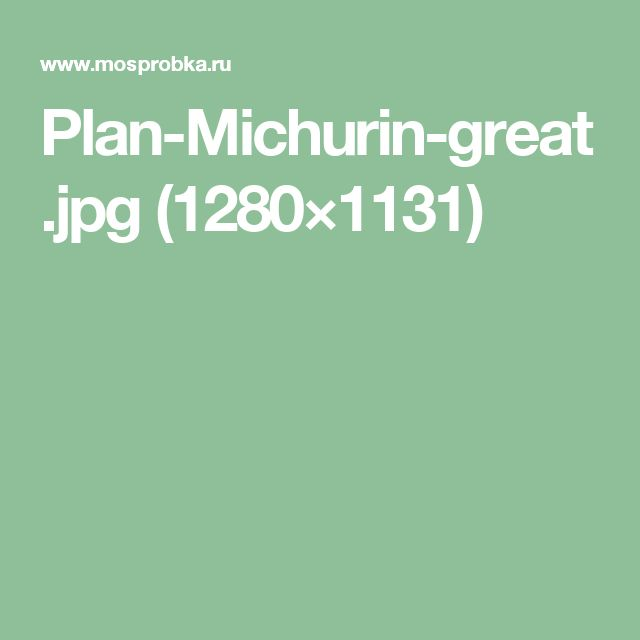 Plan-Michurin-great.jpg (1280×1131)