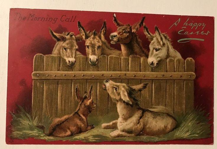 Tuck  Donkeys-Vintage-Embossed-Tuck-Art-Easter Holiday Postcard- Donkeys-p319 #Easter