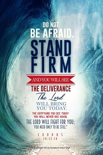"Exodus 14:13-14 ""And Moses said to the people, ""Fear not, stand firm, and see the salvation of the Lord, which he will work for you today. For the Egyptians whom you see today, you shall never see again. The Lord will fight for you, and you have only to be silent."""