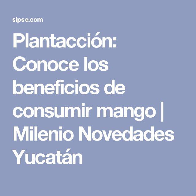 Plantacción: Conoce los beneficios de consumir mango | Milenio Novedades Yucatán