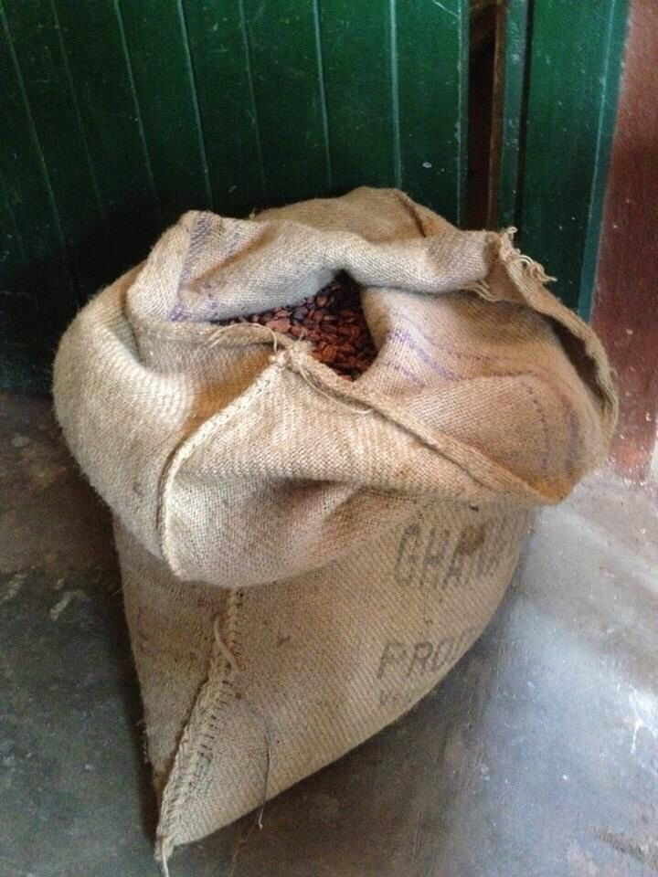 Cocoa beans ready to be shipped from Ghana to the world.