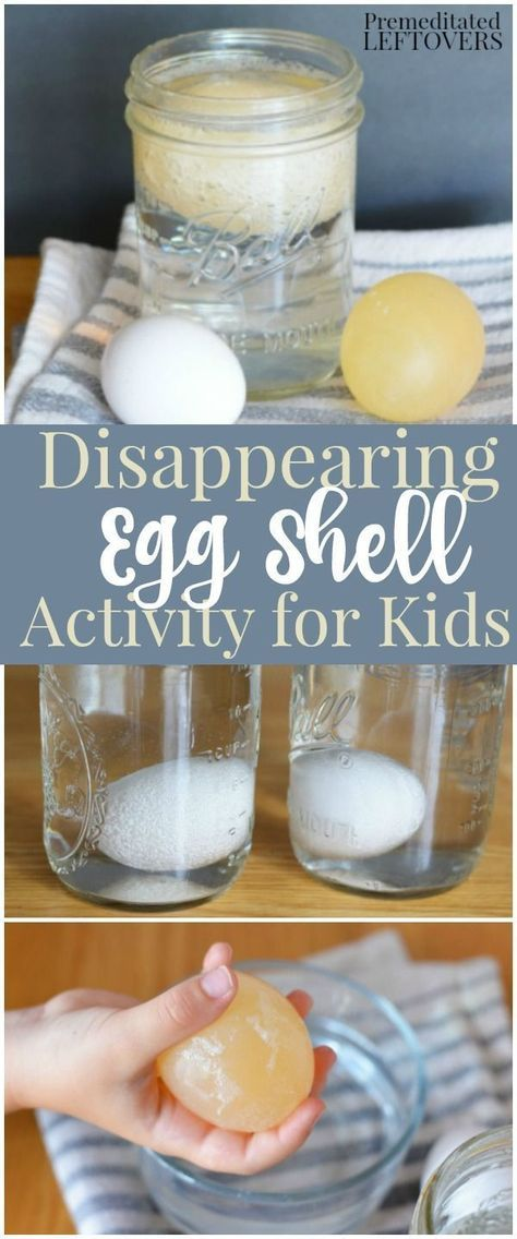 Science experiment for kids ... and fun for the adults too! ;)