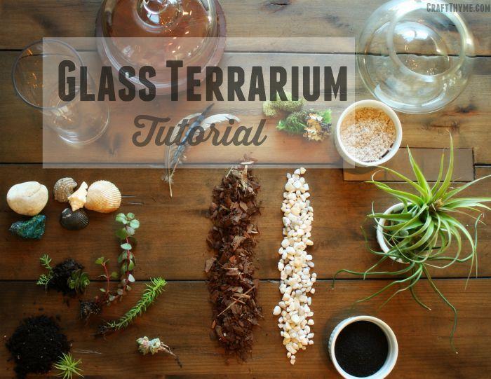 How to Make a Glass Terrarium