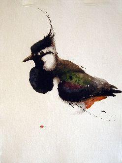 Lapwing - Karl Mårtens - watercolor