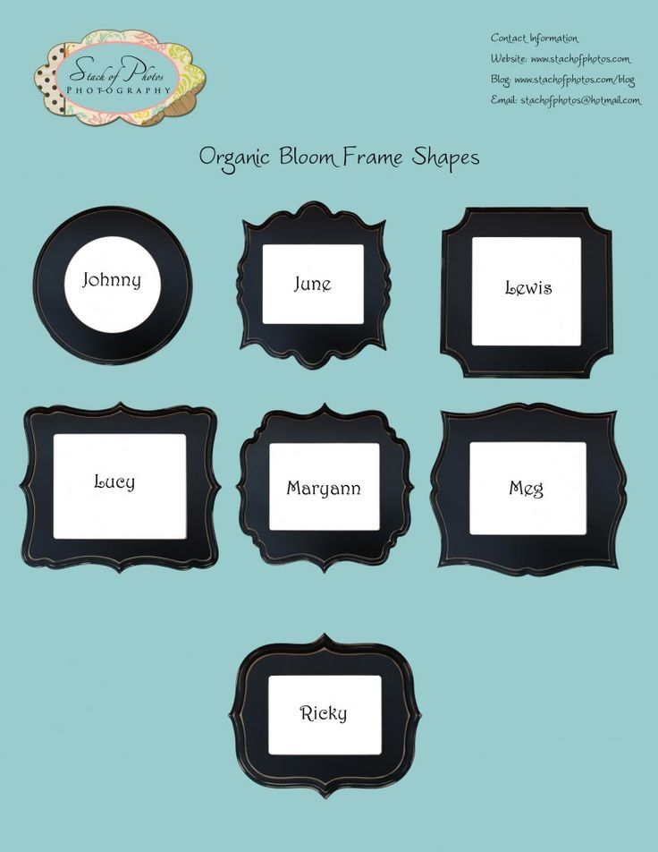 Names Of Glasses Frame Shapes : Frames by The Organic Bloom via StachofPhotos.com The ...