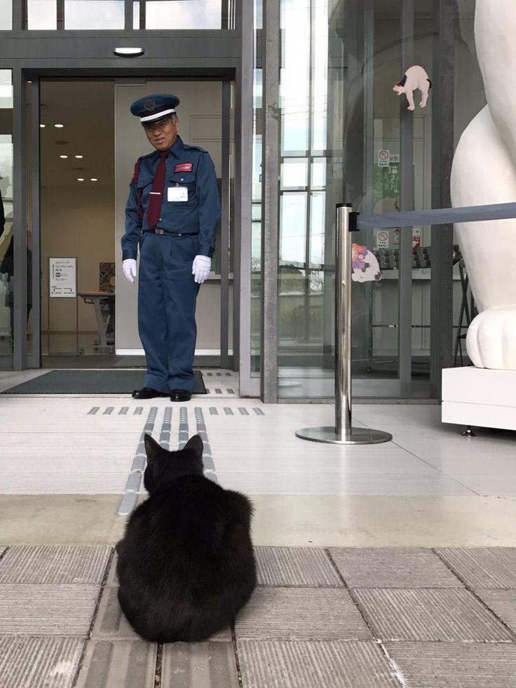 2017/4/18:Twitter:@bijutsu1 @trend_pic :ツイート「猫と警備員の攻防」10万イイネ!の感謝を込めて、トートバックを発売します。黒猫が巨大な化け猫に変化した浮世絵(国芳)風の絵柄。価格は1,500円、サンキュー390枚の販売となります。限定商品のため当館ショップのみで取り扱い(通信販売不可)。ご来館をお待ちしております。