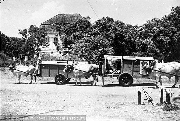 Cikar di depan Gedung Setan (Haunted House) 1926 - Jalan Kupang Pasar Kembang