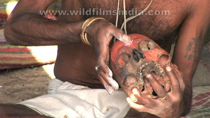 Watch it to believe It!! The terrifying Aghori sadhus