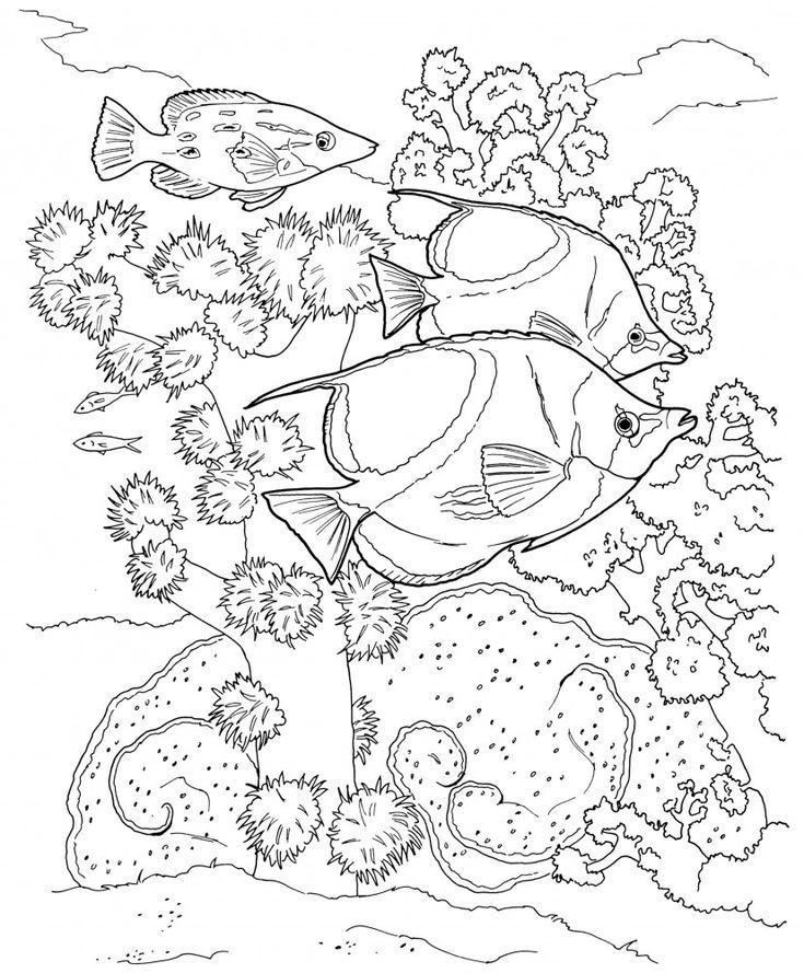 ocean landscape coloring pages - photo #49