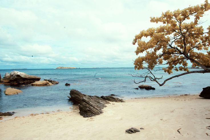 batu putih,karimunjva island,jepara, Indonesia