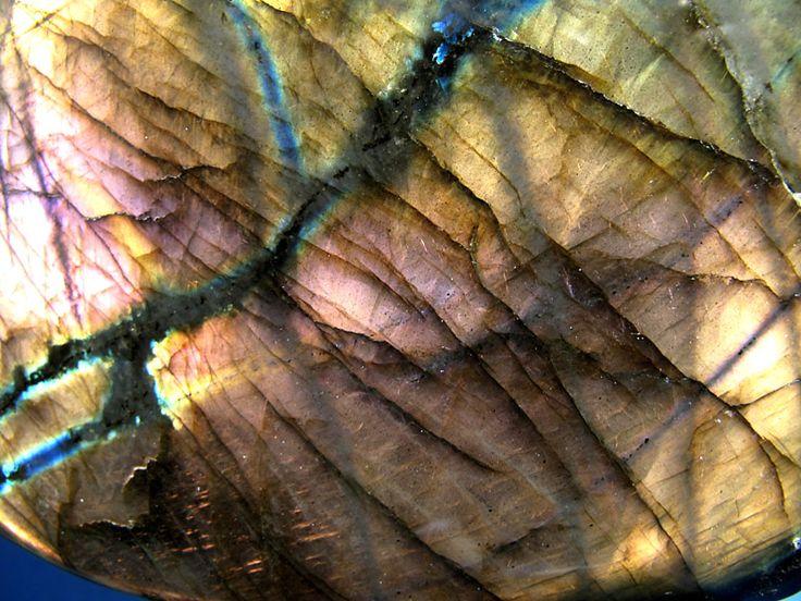 Detail. Madagascar