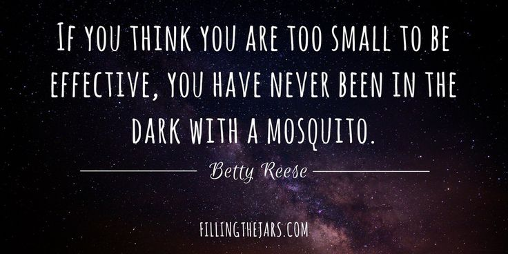 """If you think you are too small to be effective, you have never been in the…"