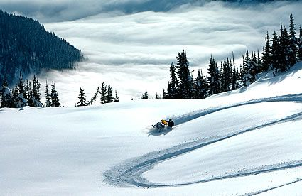 Snowmobile riding in Revelstole, BC #Revelstoke