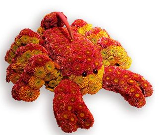 Oh my Fiesta Flowers!: Escorpión floral. Mascotas florales.