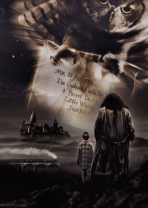 Harry Potter Forever ♥