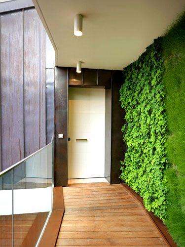In corridoio sboccia la primavera. A parete, il giardino verticale realizzata da Verde Profilo. L'azienda monta una struttura di piante dota...