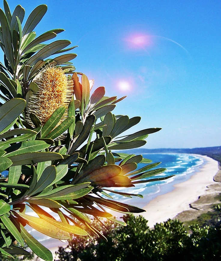 Byron Bay NSW- Possible next holiday destination :)